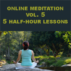Qigong Meditation Vol 5 Webinar 5 Lessons