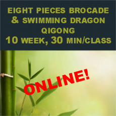 Eight Pieces Brocade & Swimming Dragon 10 week