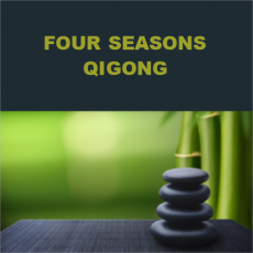 Four Seasons Qigong for Wellness and Pain Relief