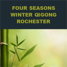 Four Seasons Winter Qigong