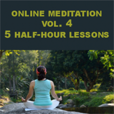 Qigong Meditation Vol 4 Webinar 5 Lessons