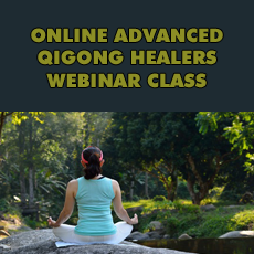 Advanced Qigong Healers Recorded Program