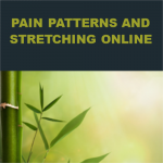 Pain Patterns and Stretching: A Qigong Approach Online Class
